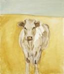 bob_cow